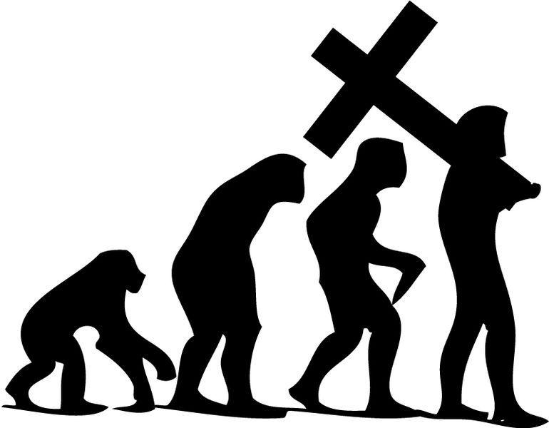 Fede e ragione: dalla Chiesa cattolica all'evoluzionismo