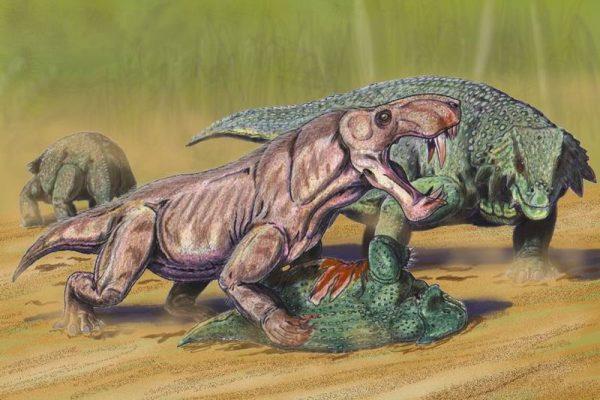 Gorgonopsi Gorgone