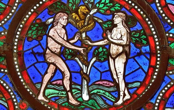 La rivelazione data a don Guido può conciliarsi con la Genesi mosaica?