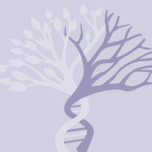 Conversazioni sulla Genesi con Renza Giacobbi
