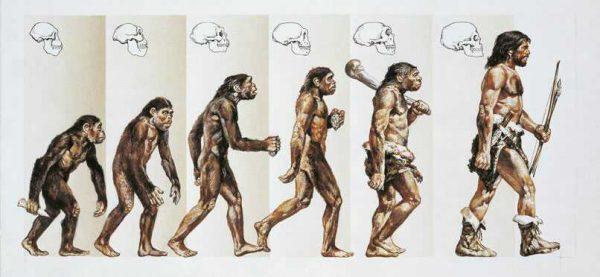 Fede e ragione: evoluzionismo