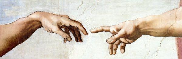 Creazione, teo-evoluzionismo